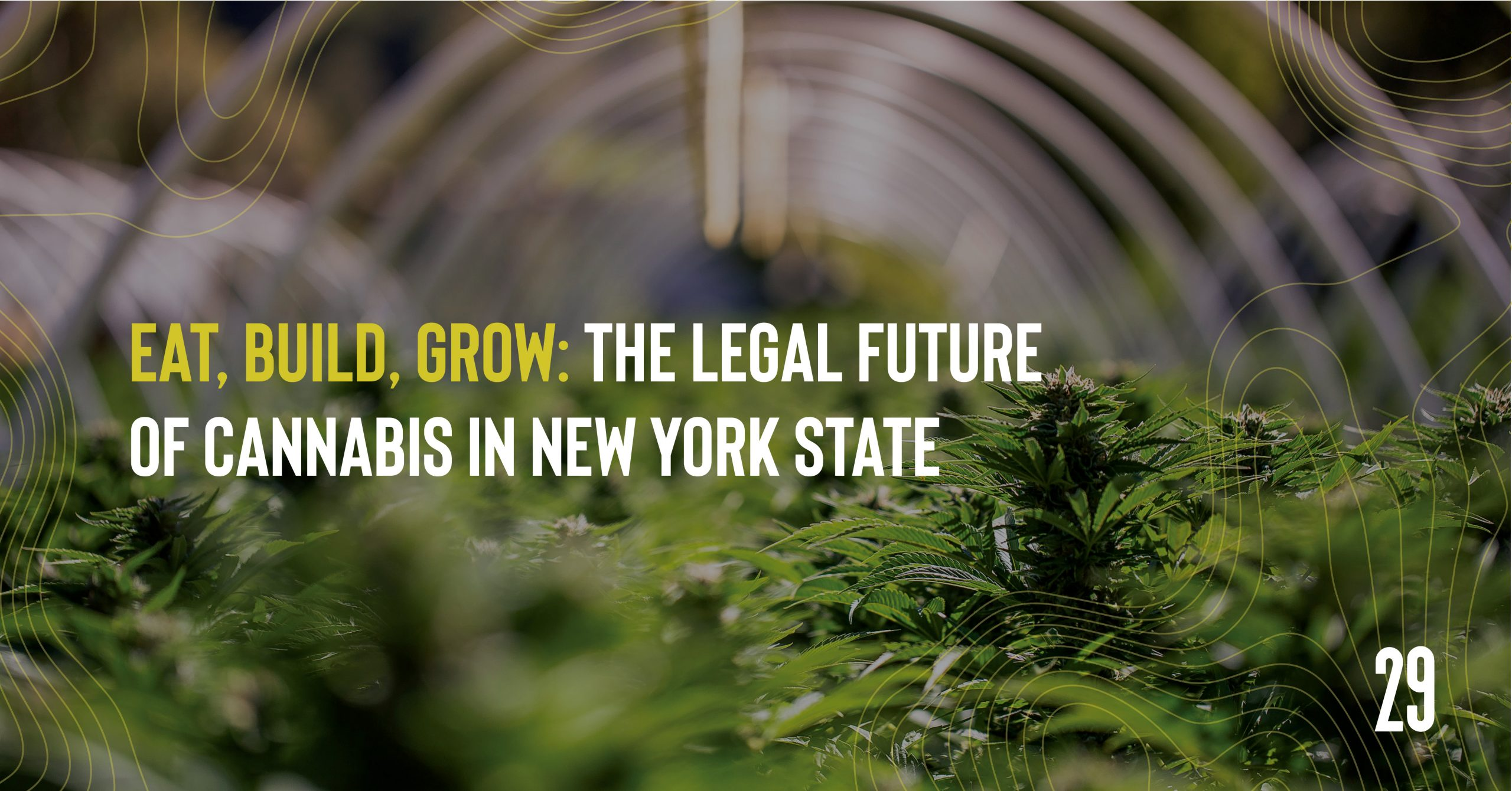 Teaser image - Eat, Build, Grow: The Legal Future of Cannabis in New York State